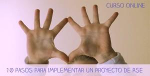 Curso Online: 10 pasos para Implementar un Proyecto de RSE
