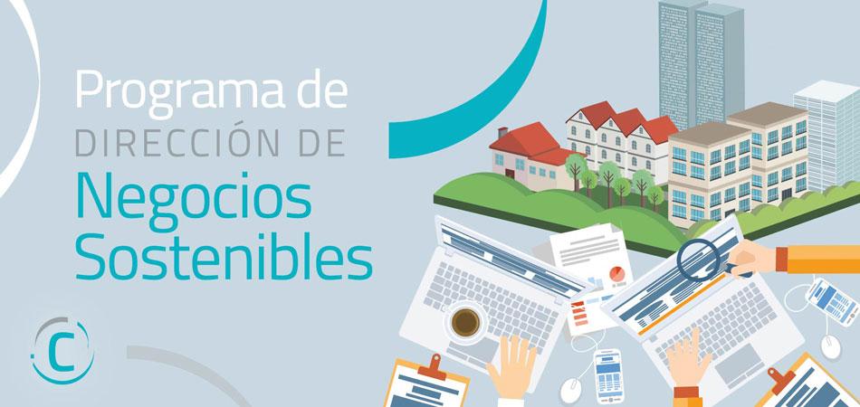 Programa de Dirección de Negocios Sostenibles