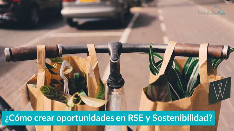 ¿Cómo crear oportunidades en RSE y Sostenibilidad?