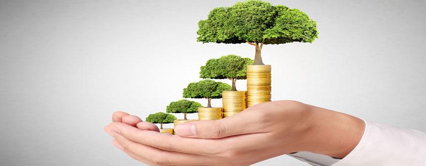 Inversión Responsable y Bonos Verdes