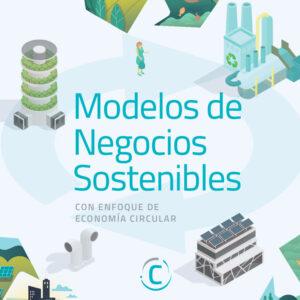 Workshop de Modelos de Negocios Sostenibles